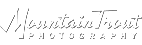 Mountain Trout Photography